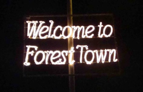 Forest Town Christmas Lights