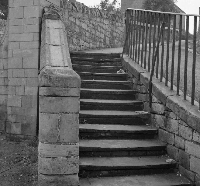 Mystery Steps   CHAD 16966