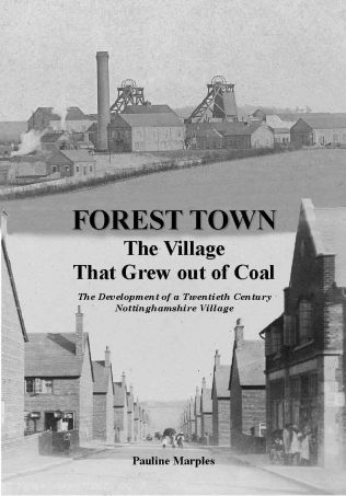 Forest Town The Village That Grew Out Of Coal