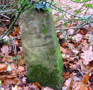 An Edwinstowe boundary stone near Post C