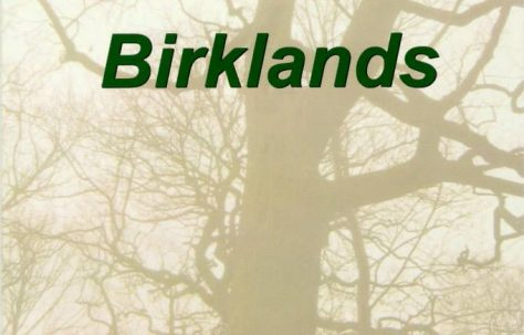 Thynghowe and Birklands