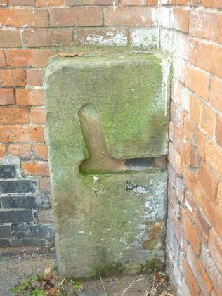 Mansfield Mystery