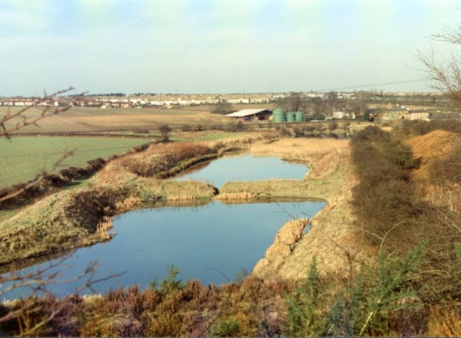 No 4 Newlands ponds from pit tip | D Johnson
