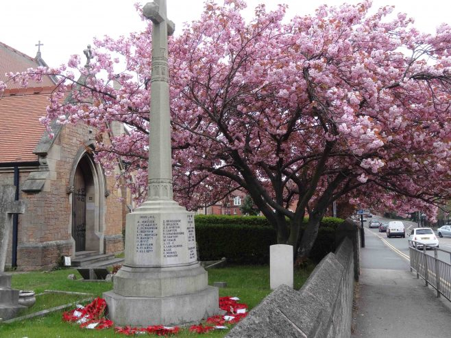Cenotaph, poppy wreaths and blossom | Pauline Marples