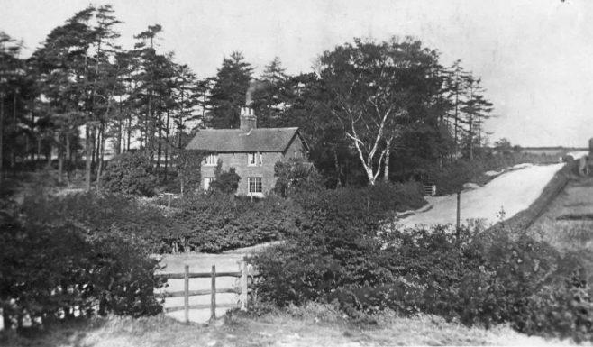 circa 1912 | Osler, Forest Town