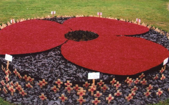 A Poppy of Remembrance