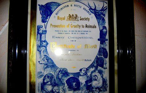 Prize Award