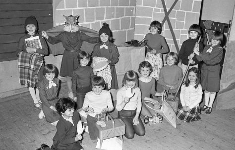 Forest Town Brownies -
