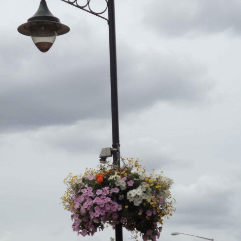 Flowers & Street Furniture Stockwell Gate | P Marples