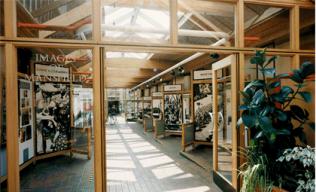 Mansfield Museum | Mansfield Museum