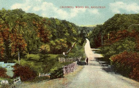 Caudwell Wood Road