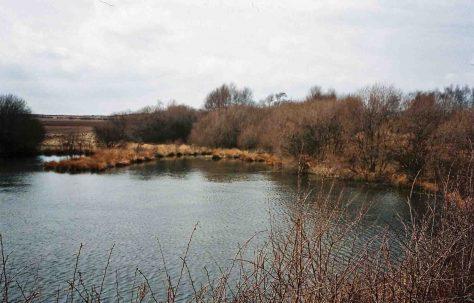 Garibaldi Woods - Spa Ponds - Gara Ponds