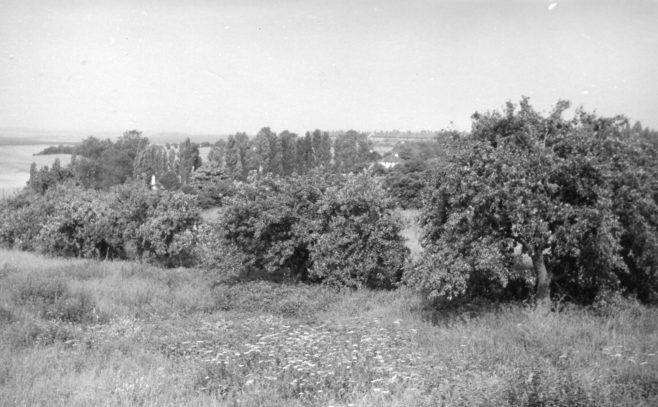 Small holding land circa 1969 | A & J Gascoyne