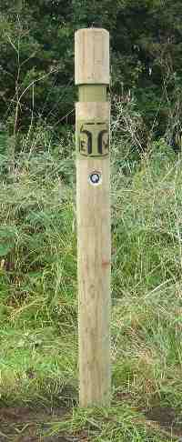 These posts mark the Thynghowe Trail | All photos by Steve Horne and the Friends of Thynghowe