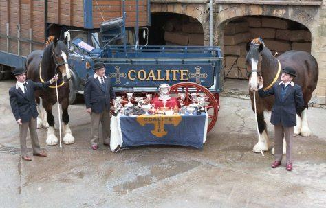 Coalite Horses