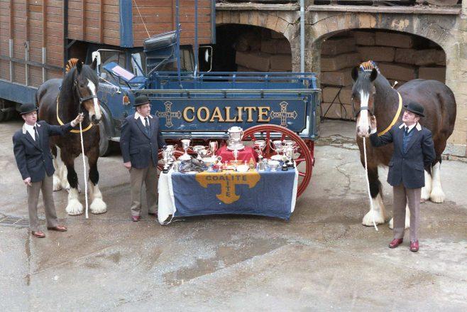 Coalite Horses | CHAD V2206 1